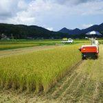 ひまわり館🌻新米祭り